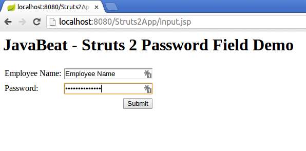 struts2 password tag example input