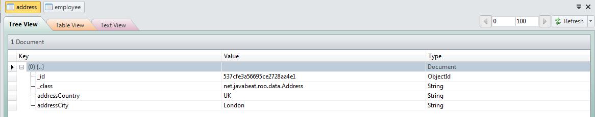 MongoDB Address Document
