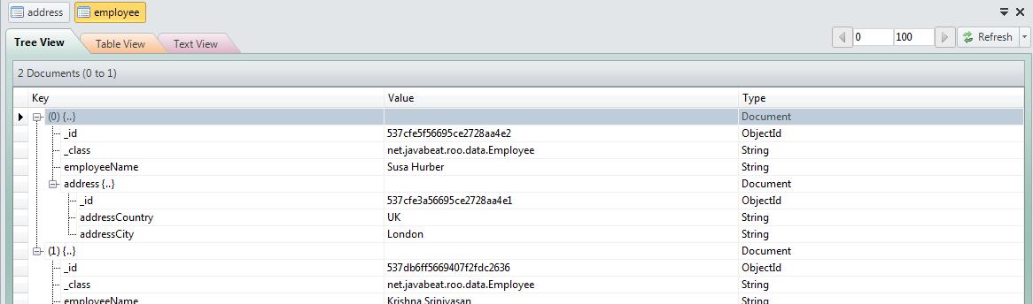MongoDB Employee Documents